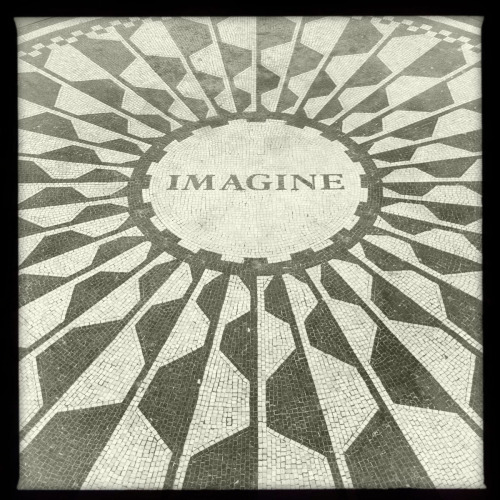 Strawberry Fields  6-21-12