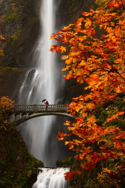 bluepueblo:  Misty, Multnomah Falls, Oregon photo via fina