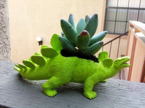 caseyapplebox:  Plant-A-Saurus