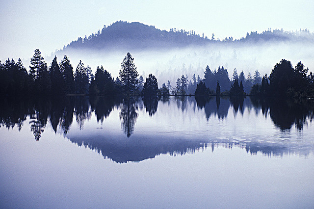 exvin:  Morning Mist by nature.54855 on Flickr.