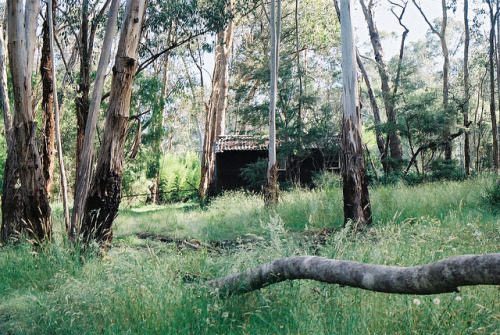 closing:  shack near warrandyte river by c banger on Flickr.