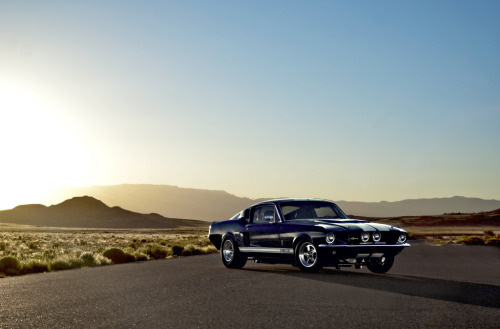 carpr0n:  Rise of the snake Starring: '67 Shelby GT500 (by Lunchbox PhotoWorks)  Eleanor