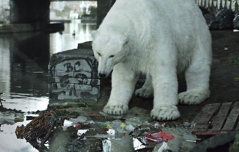 Radiohead With a Homeless Polar Bear (via Greenpeace Video Pairs Radiohead With a Homeless Polar Bear : TreeHugger)