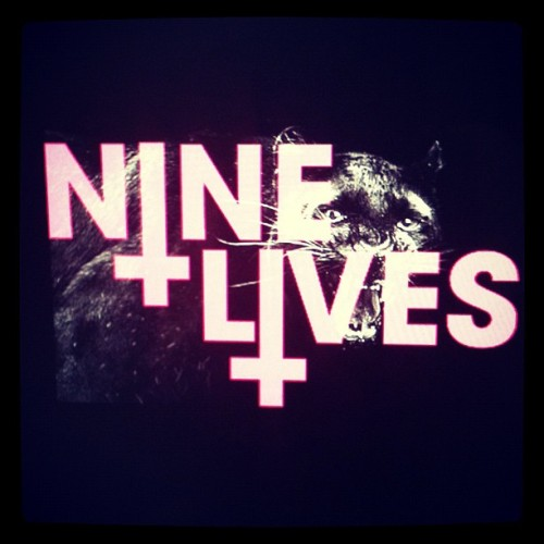Nine lives (Taken with Instagram)