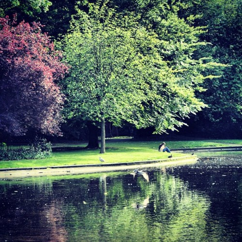 Saint Stephen's Green #Park #dublin #ireland  (Taken with Instagram)