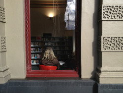 mishobaranovic:  North Melbourne Library