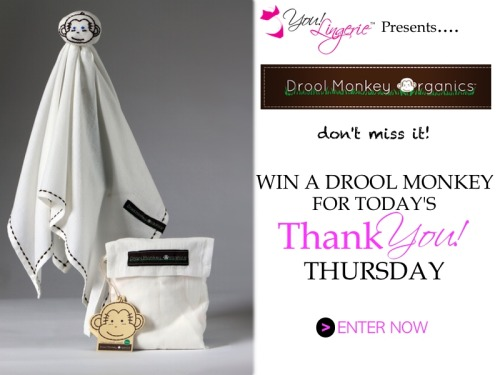 Enter today's Thank You! Thursday for a chance to win a Drool Monkey Lovie from Drool Monkey Organics. The Drool Monkey Lovie is a great organic teether that helps prevent drool rash for your little one.