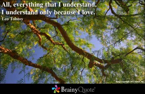 All, everything that I understand, I understand only because I love. - Leo Tolstoy