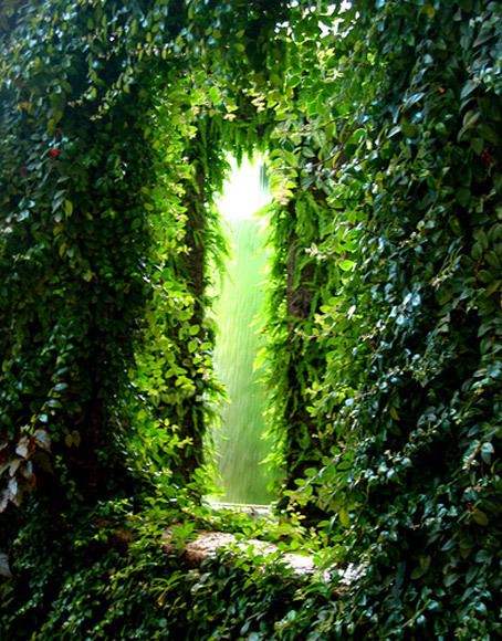 bluepueblo:  Ivy Portal, Scotland photo via vbshalom