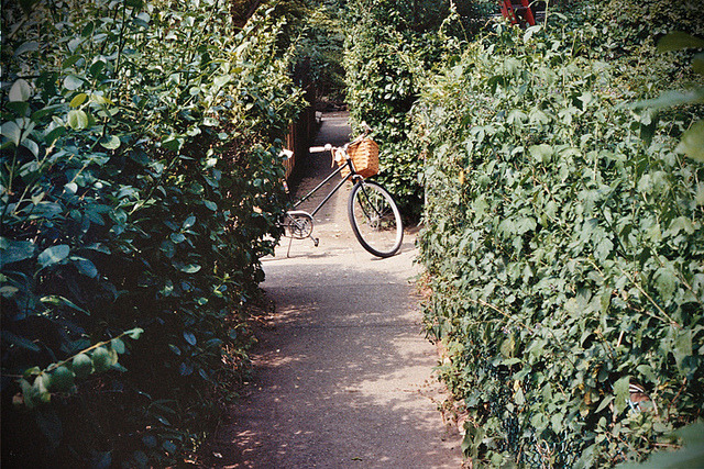 Bike in the Bushes by momma bird photography on Flickr.