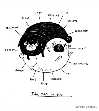 laughingsquid:  The Tao of Pug