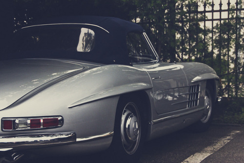 wellisnthatnice:  300SL Roadster by Daviel Stosca on Flickr.