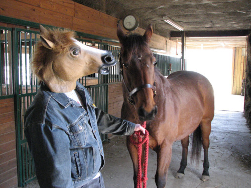 horsemasks:  Hangin' with Finn (by wickerman)