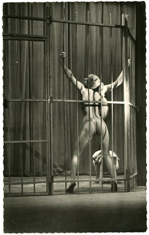 Lock me in a cage naked like the wild animal I am and let me be your pet mmmm Purrrr @geekittyx Sexual Fantasy