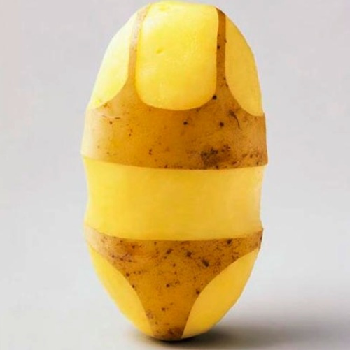 heyfunniest:  can this sexy potato get 100,000 notes? REAL potatoes don't dress like whores and have self respect. cover up hun(:   THIS BLOG. THIS!