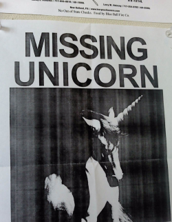 Someone lost their unicorn.