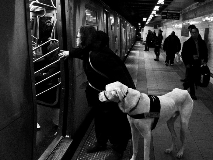 Blind , Manhattan 2012