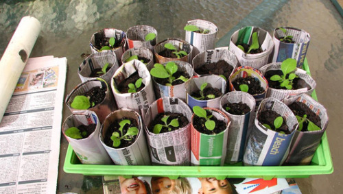 mothernaturenetwork:  10 ways to repurpose newspaper at homeHere are some practical ways to reuse all that newsprint.