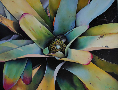 Bromélia - Óleo sobre tela - Oil on Canvas by Márcia Valle on Flickr.