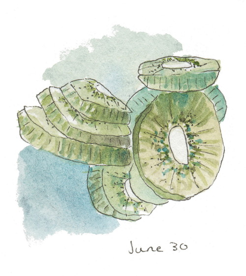 366sketchbook:  182/366 Kiwis: my favorite snack.