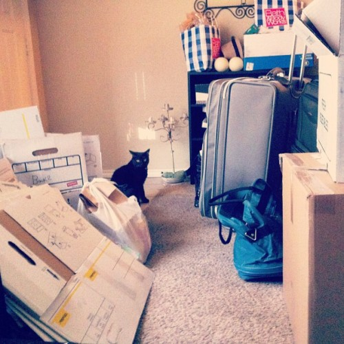 On the floor: a giant mess. I'm moving in a week, ok? #photoadayjuly  (Taken with Instagram)