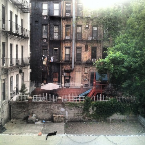 New Backyard #spanishharlem (Taken with Instagram)