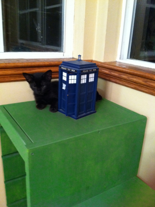 Lucy with the Tardis