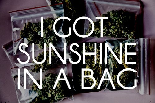 i could use a bag of sunshine right about now.