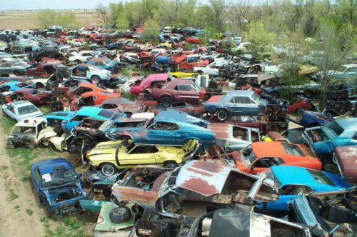 "musclecardreaming:  ""Stang-yard""  Breaks my heart seeing ""junkyards"". =/"
