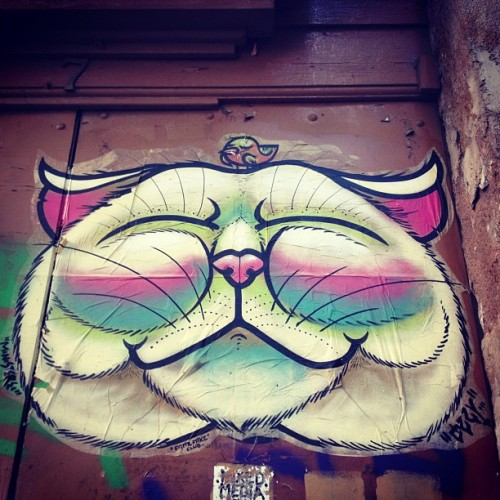 The #cat and the #bird #streetart in #barcelona  (Taken with Instagram)