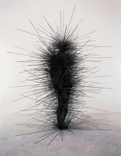 sublimespy:  Antony Gormley