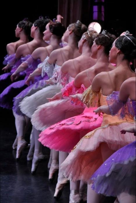 tutusandpirouettes:  Love all the colourful tutus.