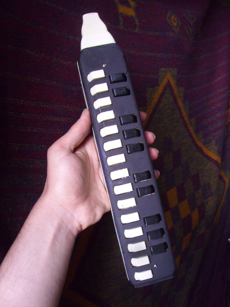 I turned my Melodica black. I originally painted a little white-purple sunburst on the shell as well, but I didn't like the colours after all and sprayed over it.