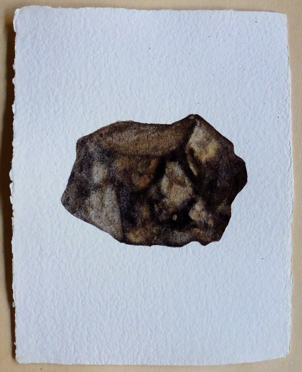 METEORITE , A PORTRAIT watercolor on paper. 2012 (by catherinewillis:)