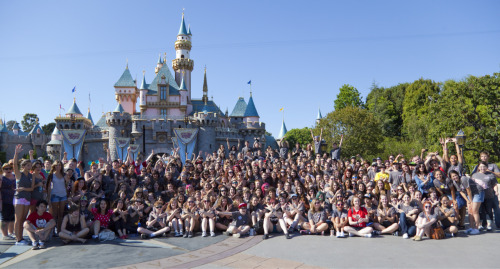 davidthestrange:  That one time we took over Disneyland…  FULL PICTURE HERE!!!