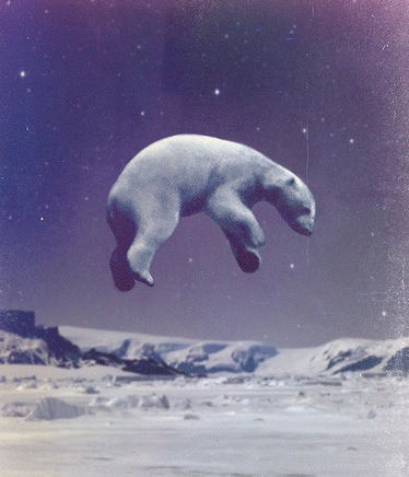Polar bear in space.