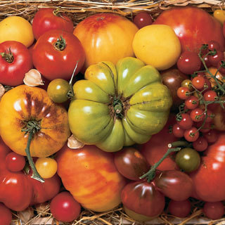 BRIGHT COLORS AT THE GREENMARKET: HEIRLOOM TOMATOES This is the best time of year at the Greenmarket—you can find just about anything you want from potatoes to avocado squash. But it's the wide array of heirloom tomatoes that excites us the most. There are dozens of varieties available—lollipop, big rainbow and three sisters are some of our favorites—and we do our best to source the kind that will work with the recipe you order. This week, heirlooms are featured in three of our four recipes, and each one will receive a different variety. That's how much we believe in customization for our customers.