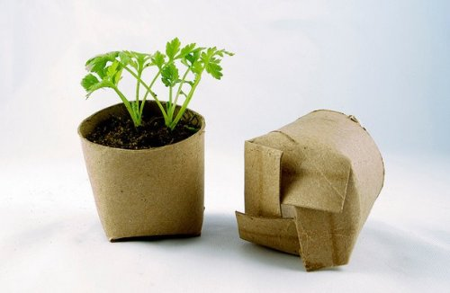 experimentoverde:  Use the carton roll of the toilet paper to grow your seeds / Usa los rollos de cartón del pepel de baño para hacer almácigos  Simple innovation at its best.