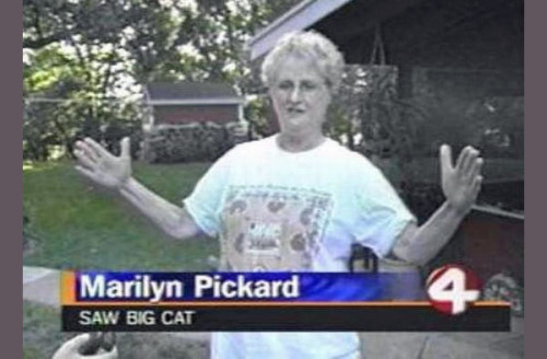funnyordie:  The 17 Funniest News Interviewee Descriptions Ever As more people bypass TV to get their news in other ways, they're also missing out on gems like these.