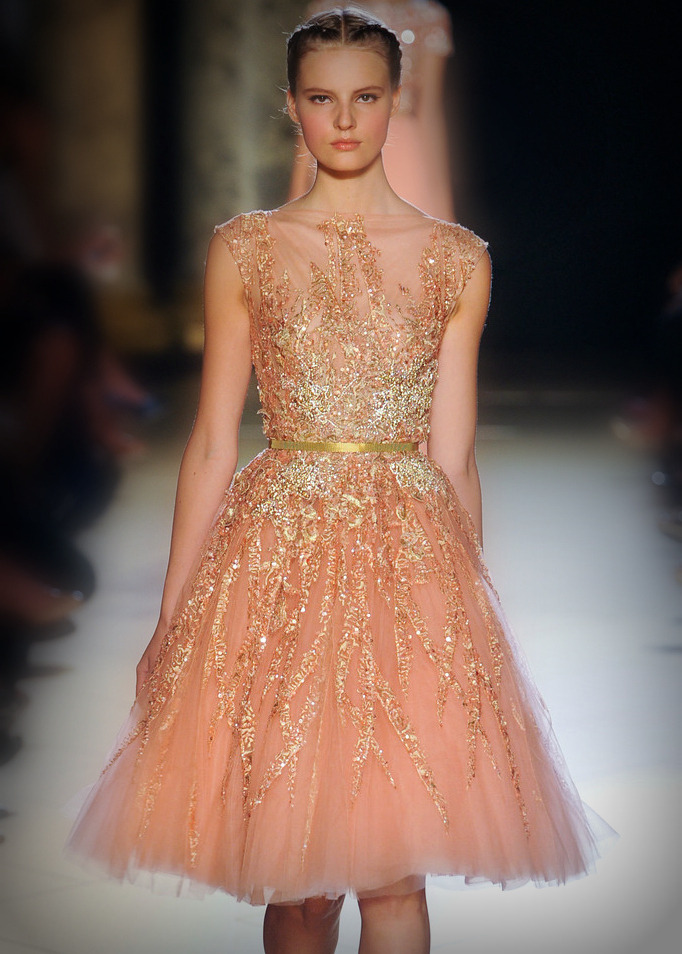 emmicamille:  Elie Saab Couture, Fall/Winter 2012