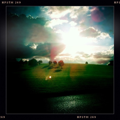 After rain. John S Lens, Pistil Film, No Flash, Taken with Hipstamatic
