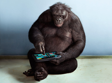stufftolookatwhileyourehigh:  bonobo with ipad.