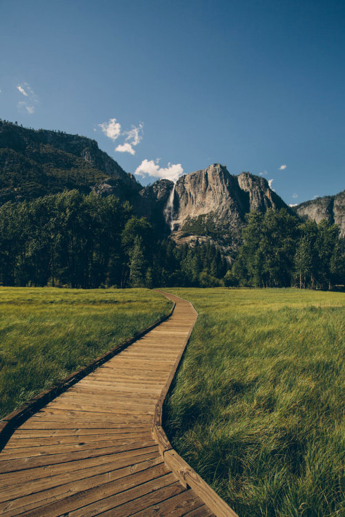 gnostic-forest:  seriesofclicks:  :beautiful path:  Wouldn't mind walking along this