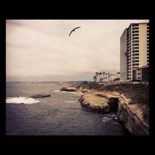 #sandiego #lajolla #beach (Taken with Instagram)