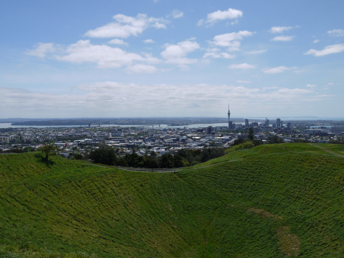 i always forget that auckland's sitting on a bunch o' volcanoes till i climb one. [[MORE]] so because i'm basically trapped here i've decided i'm just gonna have to play living in this city like it's a game, where not-hating-it means i'm winning. in getting my shit together and working and working and working i feel like i've climbed a tree and i don't know how to get down and i'm stuck and scared and not very comfortable. and what i don't wanna be in this tree, what if i wanna be in that tree over there? but maybe i just make my home in the tree for a bit, i don't know.