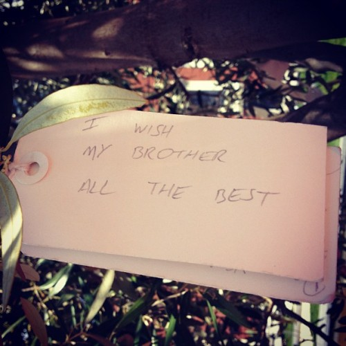 Sweet sibling sentiment from Yoko Ono's Wish Tree, currently installed on our plaza.
