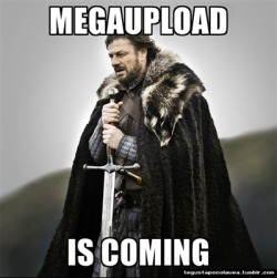 nomellamesfriki:  Brace Yourselves ! Megaupload is coming