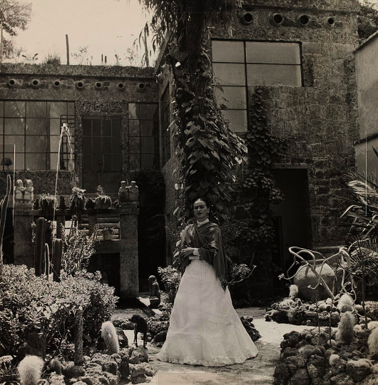 The Mexican painter Frida Kahlo in her garden at La Casa Azul in Coyoacan, Mexico City.  She was born 105 years ago today. Photo by Gisele Freund.
