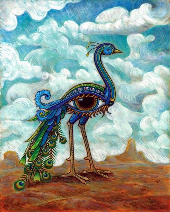 Peacock by Eya Floyd