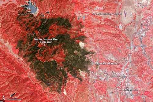 dendroica:  Waldo Canyon Fire Burn Scar by NASA Goddard Photo and Video on Flickr. The Waldo Canyon Fire was first reported on June 23, 2012, burning in Pike National Forest, three miles (5 kilometers) west of Colorado Springs. Fueled by extremely dry conditions and strong winds, it had burned 18,247 acres (74 square kilometers) by July 5. The blaze severely damaged or destroyed 346 homes, making it the most destructive fire in Colorado history. Mountain Shadows, a neighborhood northwest of the Colorado Springs city center, experienced some of the most severe damage. According to an analysis conducted by the Denver Post, the combined value of the homes that burned to the ground in the neighborhood was at least $110 million. The Advanced Spaceborne Thermal Emission and Reflection Radiometer (ASTER) on the Terra satellite acquired this view of the burn scar on July 4, 2012, when the fire was still burning but was 90 percent contained. Vegetation-covered land is red in the false-color image, which includes both visible and infrared light. Patches of unburned forest are bright red, in contrast with areas where flecks of light brown indicate some burning. The darkest brown areas are the most severely burned. Buildings, roads, and other developed areas appear light gray and white. The bright red patches of vegetation near Colorado Springs are golf courses, parks, or other irrigated land. NASA Earth Observatory image by Jesse Allen and Robert Simmon using data from the NASA/GSFC/METI/ERSDAC/JAROS, and U.S./Japan ASTER Science Team. Caption by Adam Voiland. Instrument: Terra - ASTER